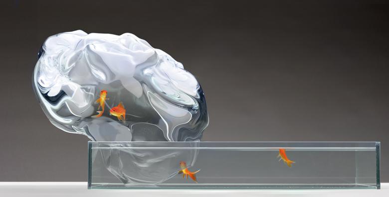 Echappée Aquarium